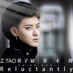 Z.TAO - Shěbudé